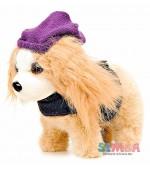 Simba игрушка собачка хаванез чичилав болонка стильная штучка Chi Chi Love
