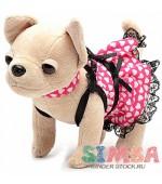 Simba  Чихуахуа Чи Чи в светящемся платье с сумочкой Chi Chi Love